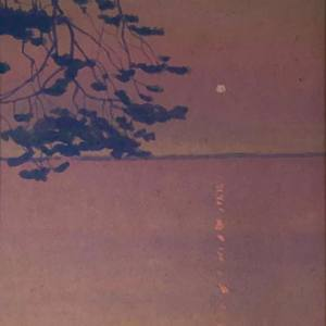 03.05.2019-30.09.2019. Выставка произведений Мюда Мечева (1929-2018) в Финляндии