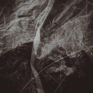 «ВНЕ». Проект Творческой мастерской арт-фото Поволжского отделения РАХ и ТСХР.