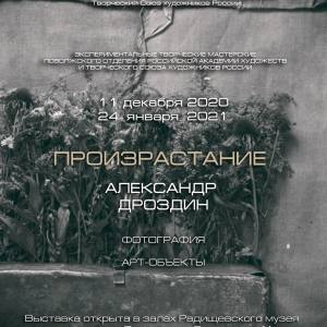 Выставка «Произрастание» Александра Дроздина в Саратове в рамках работы экспериментальных творческих мастерских ПО РАХ