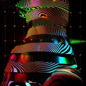 Проект «Световая и фарфоровая природа женщины» Константина, Марины и Александры Худяковых. Цифровое и аналоговое искусство в Российской академии художеств