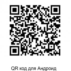 К.В.Худяков «Строгановы. Пермский период». QR код для Андроид